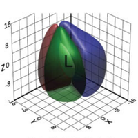 A mathematical method for the 3D analysis of rotating deformable systems applied to lumen-forming MDCK cell aggregates.