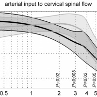Age-specific characteristics and coupling of cerebral arterial inflow and cerebrospinal fluid dynamics.